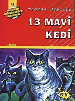 13 Mavi Kedi